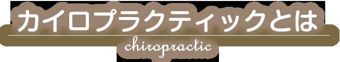 【武蔵小杉】神奈川代表カイロプラクティック店舗